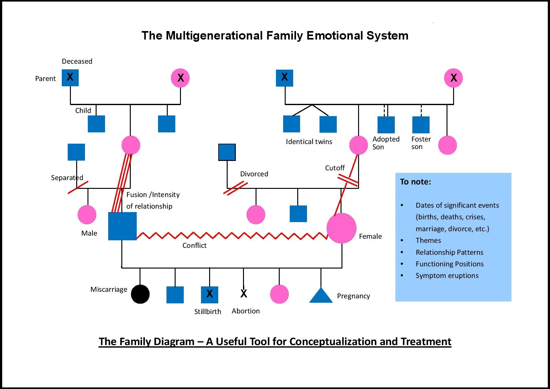 Self Photos / Files - The_Multigenerational_Family_Emotional_System_Eng_framed